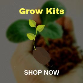 grow-kits- Canada Grows
