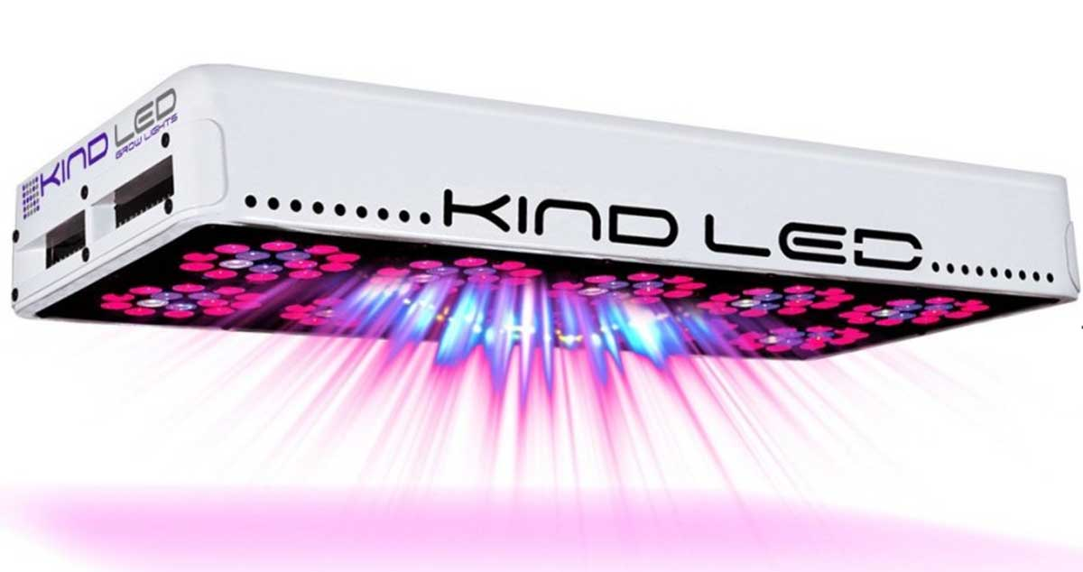 10 tips to choose the correct led grow light