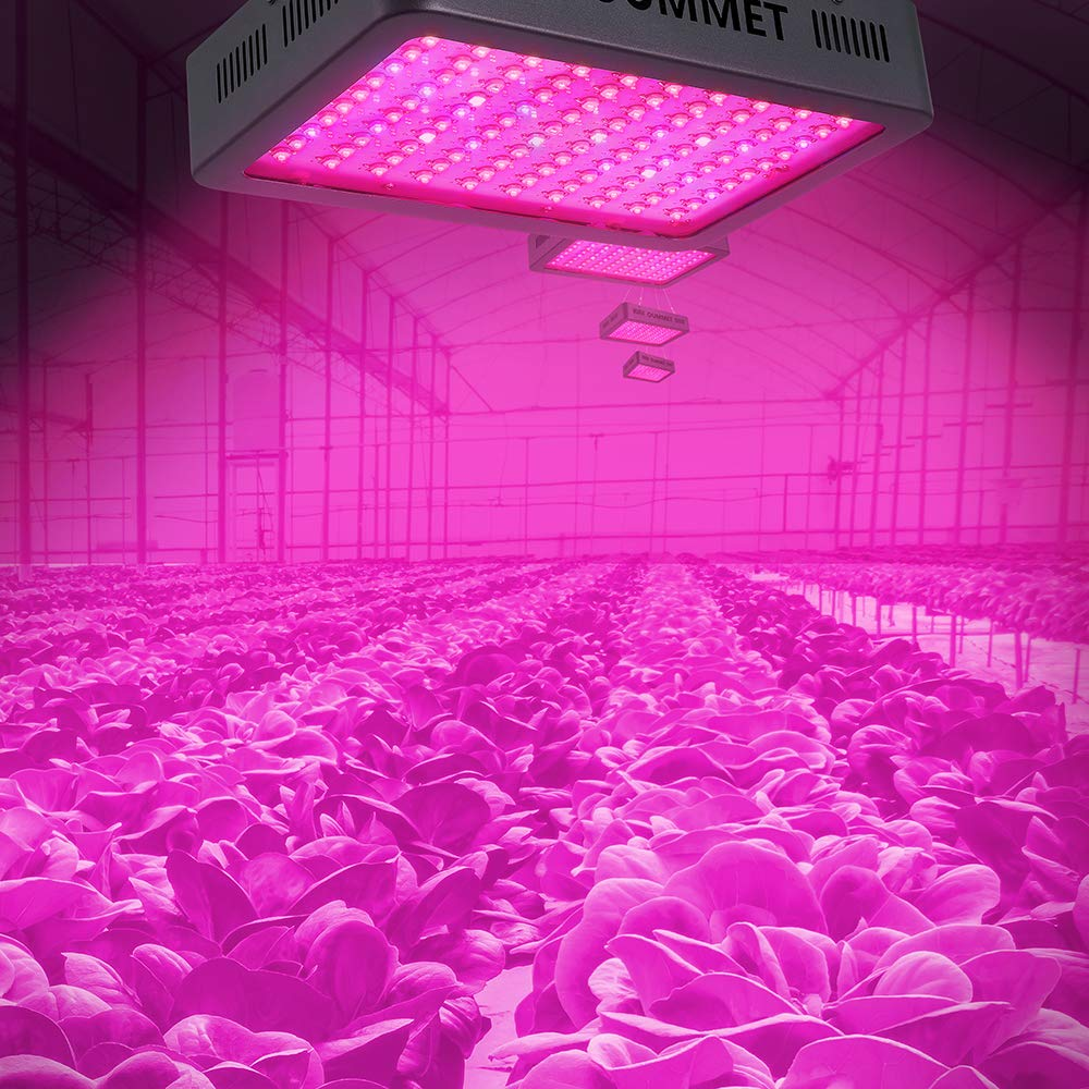 Top 10 Best LED Grow Lights Reviews 2019 - Buyers Guide