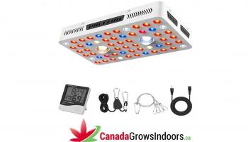 Phlizon COB LED Grow Light Series Review