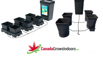 AutoPot Review – Hydroponic 4 pot System – Gravity Fed