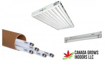 Top 8 Best T5 Grow Lights Reviews and Buyers Guide