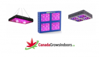 Top 10 Best LED Grow Lights Canada and USA Reviews
