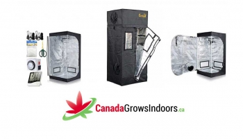 10 Best Grow Tents Canada and USA Reviews