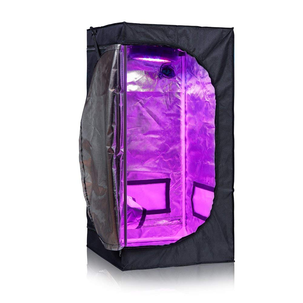BloomGrow Grow Tent 24″x24″x48″ Review Mylar Indoor Hydroponic 600D Tent