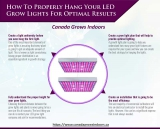 How To Properly Hang Your LED Grow Lights For Optimal Results