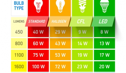 What is Lumens and how does it effect indoor plant growth?