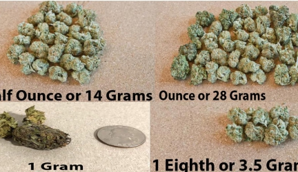 A Comprehensive Guide On Calculating Grams In An Eighth, Quarter And An Ounce Of Weed